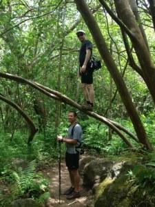 Hanakapi'ai Trail