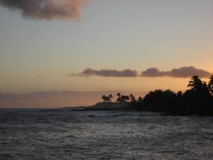 Hawaii 2013 074