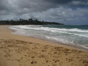 Hawaii 2013 388